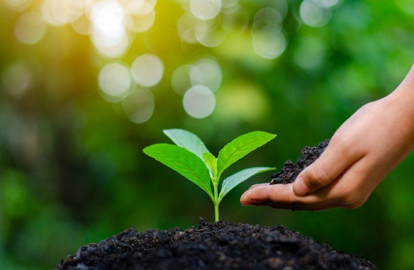 Affinity anuncia compromisso com a sustentabilidade e fim de copos plásticos nos escritórios